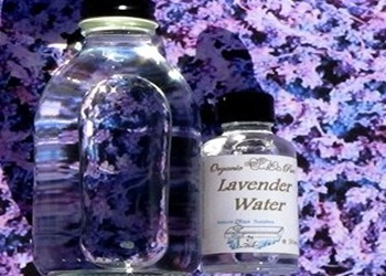 lavender dan witch hazel